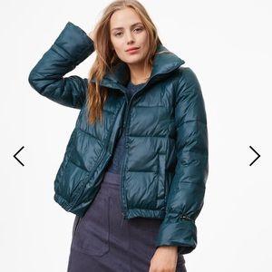 Loft puffy green jacket.